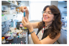 Chat with Prof. Joanna Aizenberg