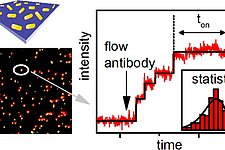 Article: Stochastic Protein Interactions Monitored by Hundreds of Single-Molecule Plasmonic Biosensors