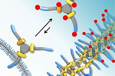 What we couldn't measure before: the stickiness of molecules