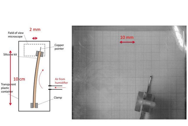 Experimental set-up of Thomas Arends. An oak board (coated on one side) was fastened in a small climate chamber with adjustable humidity. The needle at the top then showed the degree of bending while the humidity was increased from 50 percent to 90 percent in a matter of seconds.
